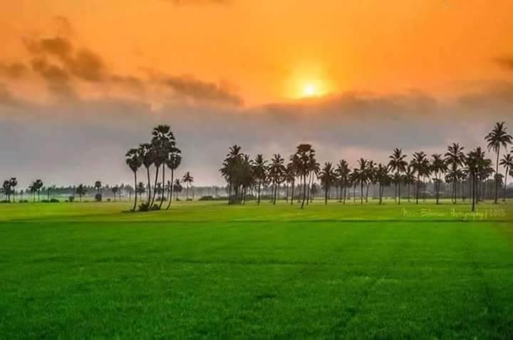 Indian Flag Hd Nature: MADE BY NATURE #republicday